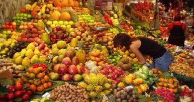 egipetskie ovoshhi i frukty