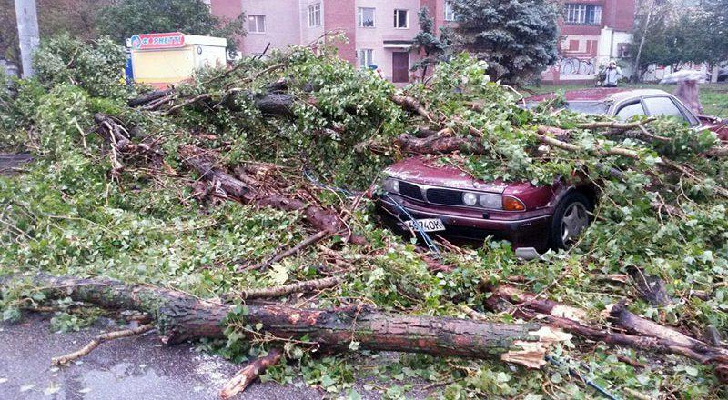 В Одессе шторм валит деревья