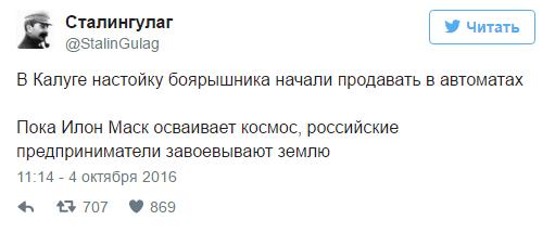 nastojka bojaryshnika