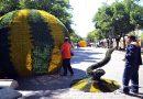 В Одессе на Дерибасовской устанавливают гигантские  арбузы, дыни и клубнику (ВИДЕО, ФОТО)