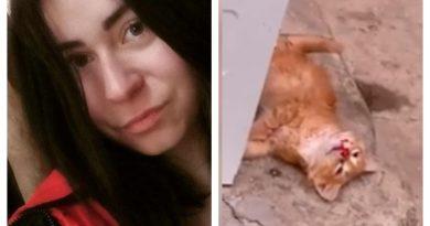 В Херсоне молодая живодерка устроила расправу над котенком у всех на глазах: видео взорвало сеть